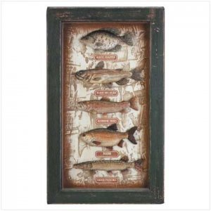 Freshwater Fish Shadowbox