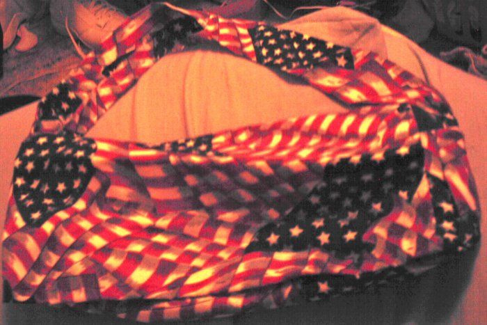 Stars and Stripes Purse