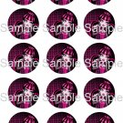 "Monster High Draculaura Bottle Cap 15 1"" Images Digital JPEG File"