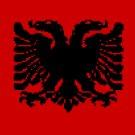 3' by 5' Albania Flag
