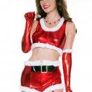 Metallic Santa Halloween Christmas Costume