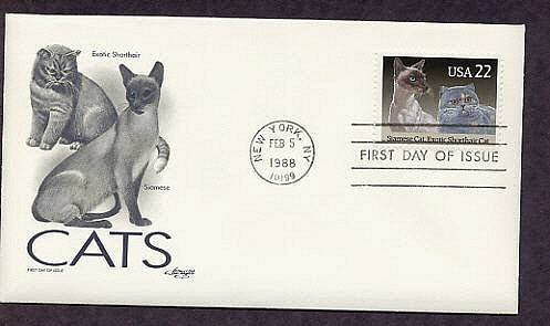 Pet Cats, Siamese and Exotic Shorthair Cat, First Issue USA