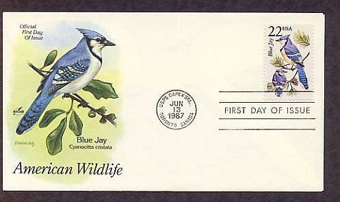 American Wildlife, Blue Jay, Cyanocitta cristata, First Issue USA