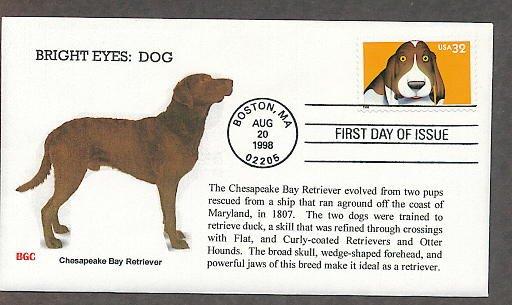 Chesapeake Bay Retriever Dog, Bright Eyes, First Issue USA!