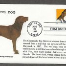 Chesapeake Bay Retriever Dog, Bright Eyes, First Issue USA!