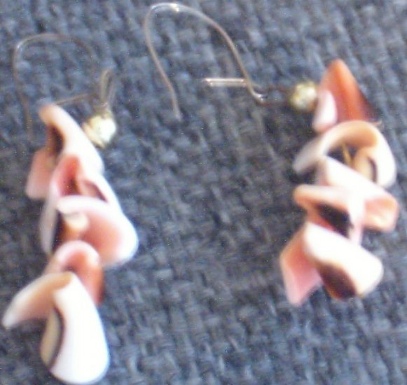 Authentic Hawaiian Shell Earrings