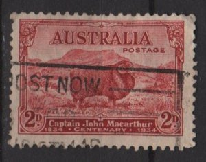 Australia 1934  - Scott 147 used - 2p, Merrino Sheep (S-618)