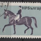 Bulgaria 1965 - Scott 1444  used - 1s, Horsemanship   (7-470)