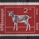 Bulgaria 1974  - Scott 2159  CTO -  2s, Domestic animals(7-630)