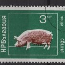 Bulgaria 1974  - Scott 2160  CTO -  3s, Domestic animals (7-628)