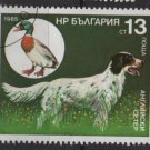 Bulgaria 1985 - Scott  3130  used -  13s, Hunting dog (8-56)