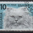 Bulgaria 1989 - Scott 3513 used - 10s,  Cats (8-184)