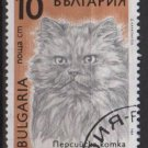 Bulgaria 1989 - Scott 3514 used - 10s,  Cats   (8-182)