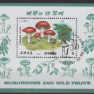 North Korea 1989 - souvenir sheet of 1 Cinderella CTO - Mushrooms (SS3-75)