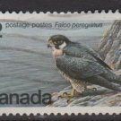 CANADA 1978 - Scott 752 used - 12c, Falcon, Wildlife conservation   (10-727)