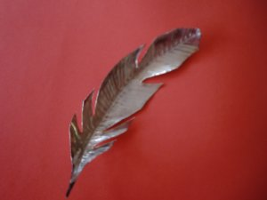 Copper-colored Feather 2