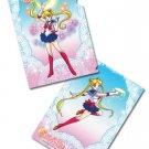 Sailor Moon Powers Clear File Folder