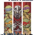 FCBD 2015 IDW Teenage Mutant Ninja Turtles Prelude to Vengeance