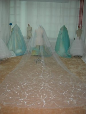 2T Ivory Cathedral Embroidered Wedding Bridal Veil 40/170 v65iv