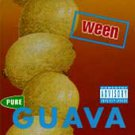 Pure Guava [PA] by Ween (CD, Nov-1992, Elektra) Original Classic Album DISC ONLY