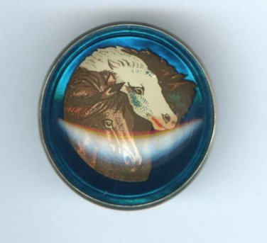 Beautiful Cobalt Blue Glass Background Horse Image Bridle Rosette Button
