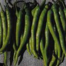 SWEET SURMELI PEPPER -HEIRLOOM 100 FRESH SEEDS-