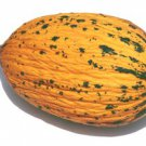 KIRKAGAC MELON  100 FRESH SEEDS