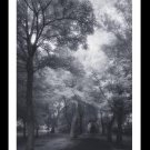 A4 Framed Landscape Print - Sanctuary - Black and White