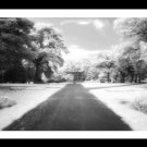 A4 Framed Landscape Print - West Park And Bandstand