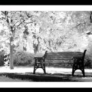 A4 Framed Landscape Print - A Place To Sit
