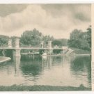 Public Gardens-Boston Massachusetts Postcard