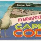 Greetings from Hyannisport Massachusetts Postcard