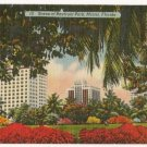 Scene of Bayfront Park-Miami Florida Postcard