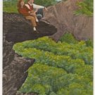 Grandfather Mountain-Linville North Carolina Postcard