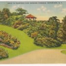Drive in Thompson Park-Watertown New York Postcard
