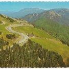 Hurricane Ridge-Olympic National Park Washington