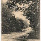Albany Street-Cazenovia New York Postcard