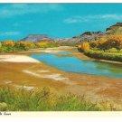 Rio Grande River New Mexico Postcard