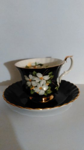 Black Royal Albert Cup & Saucer Floral Dogwood Bone China England
