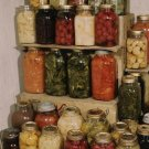 24 books CD Home Canning, Recipes, Preserving Pickling Dehydrating Food, Backwoods Self-Sufficiency