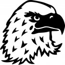 Eagle Custom Made Vinyl Sticker Decal 002, Car Decal, Bumper Sticker, Laptop Decal, Window Sticker