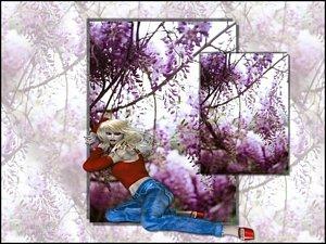 Shelter Me Desktop 1024x768
