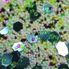 Glitter Mix #305