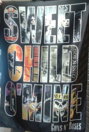 GUNS N' ROSES Sweet Child O'Mine FLAG BANNER CLOTH POSTER WALL TAPESTRY CD Lies METAL