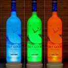 Grey Goose Vodka Color Changing Remote LED Bottle Lamp Pub Bar Neon Light Sign