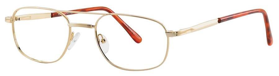 Fundamentals F201 Gold Eyeglasses Size55-20-
