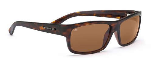 Serengeti Martino Dark Tortoise  Sunglasses
