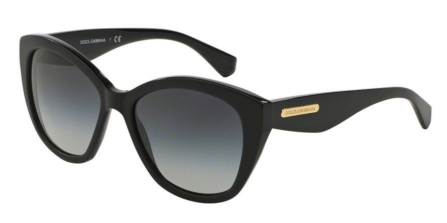 Dolce & Gabbana 0DG4220 BLACKMATTE BLACK Sunglasses