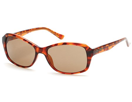 CANDIES CA1000 52F   - dark havana / gradient brown Injected