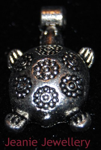 TurtleTibetan Silver Charm